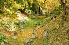 Der jüdische Friedhof in Rüthen mit Grabstätten zwischen den Jahren 1625 und 1958 ist der älteste Westfalens