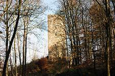 Die Ruine Waldenburg hoch über dem Biggesee bei Attendorn