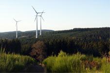 Blick von den 'Drei Buchen' auf den Windwanderweg Hilchenbach