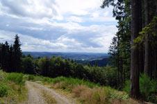 Blick vom Zugangsweg 4 des Hilchenbacher Windwanderwegs auf Oberndorf