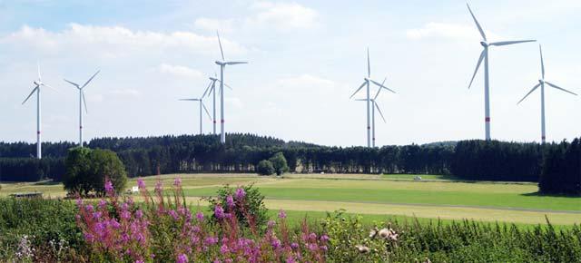 Blick von der Fuchskauten-Scheune auf den Windpark