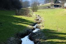 Der Heesbach zwischen Oberhees und Mittelhees
