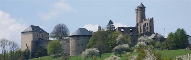 Blick auf Burg Greifenstein