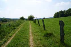 Pilgerweg in Richtung Unterbierenbach