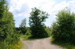 Das Alte Heck zwischen Krombach und Altenkleusheim