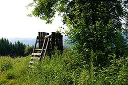 Aussichtsplatz am Rundweg Lennestadt oberhalb von Saalhausen