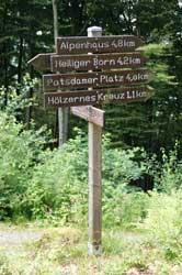 Wanderwegweiser oberhalb von Saalhausen