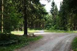 Wegekreuzung zwischen Wollberg und Riemen