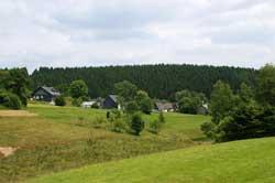 Zinse vom oberen Zinsebachtal