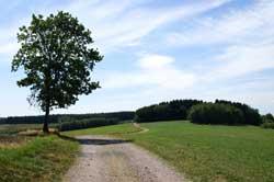 Panorama-Höhenweg Belmicke