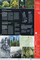 Info-Tafel am Wacholderweg