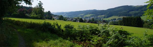Blick vom Rheinischen Weg auf Hülsenbusch