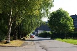 huelsenbusch2_800