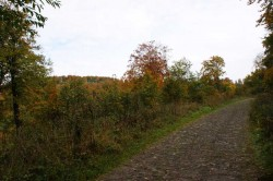 Blick über das NSG Hohlsterzenbach