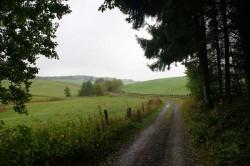 Wanderweg A2 Richtung Oberbüschem