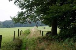 Der Wanderweg A2/A4 hinter zum Flosbach