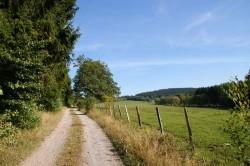 Blick über den Weidekampen zum Wimberg