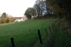 Wanderweg unterhalb der Ortschaft Forste