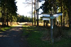 Hier trifft der Kreuztaler Zugangsweg auf den Rothaarsteig