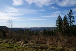 Blick vom Kirrberg ins Ferndorftal