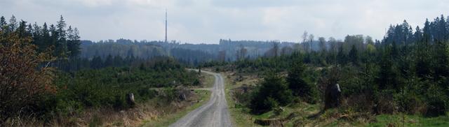 Dreifichtenweg mit Blick auf den Sender Ederkopf