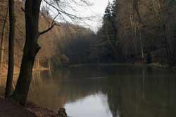 Der Milchborntalweiher oberhalb des Kadettenweihers