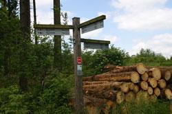 Wegezeiger am Poppenberg