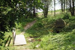 Die Hoppeckequelle am Rand des NSG Neuer Hagen
