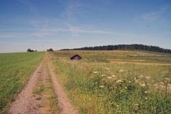 Die alte Heidenstraße zwischen Küstelberg und Wagenschmier
