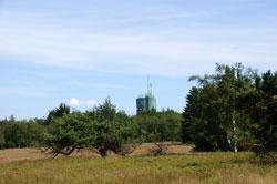 Blick über die Hochheide auf den Astenturm