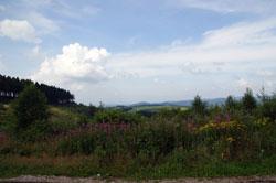 Panoramablick bei der Hoheleyer Hütte