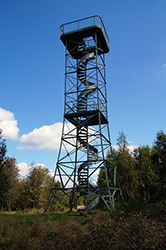 Der Aussichtsturm auf dem Giller oberhalb der Ginsberger Heide