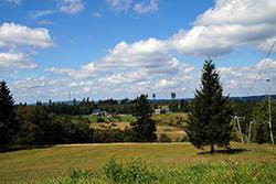 Blick vom Gillerberg über die Ginsberger Heide