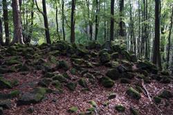 Der Große Stein bei Holzhausen