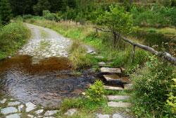 Furt durch den Habecker Bach im Schwarzbachtal