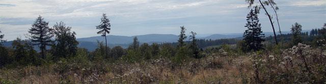 Panoramablick auf der Tiefenrother Höhe