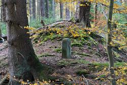 Historischer Grenzstein P (Kurkölner Seite) am Müsener Schlag
