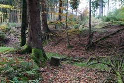 Historischer Grenzverlauf am Müsener Schlag