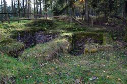 Steinerne Keller auf dem Altenberg