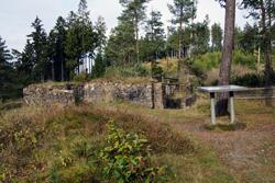 Die Ausgrabungen auf dem Altenberg gehörten zu den ersten systematischen Untersuchungen zum hochmittelalterlichen Bergbau in Europa