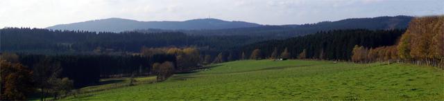 Blick über den Weidenkampen Richtung Kindelsberg