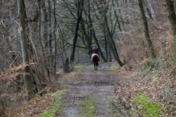 Das Hanfbachtal westlich von Mendt