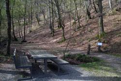 Rastplatz unterhalb der Eifgenburg