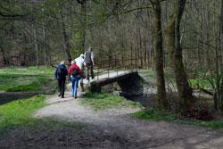 Der Eifgenbachweg untrhalb der Markusmühle