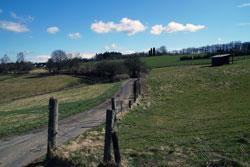 Naturschutzgebiet Magerwiese Hohenhain