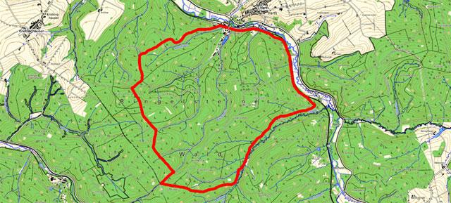 Route der Wanderung durch den Ringelsteiner Wald