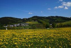 Elleringhausen mit Borberg, Habberg und Ginsterkopf