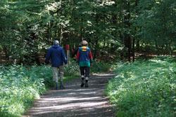Wanderer in Richtung Leyenweiher