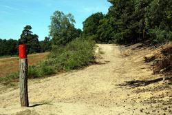 Der Wasser-und-Dünen-Wanderweg am Fliegenberg