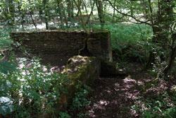 Ruine des Brunnenkellers. Angelegt wurde er Mitte des 19. Jahrhunderts von Baron von Loë
